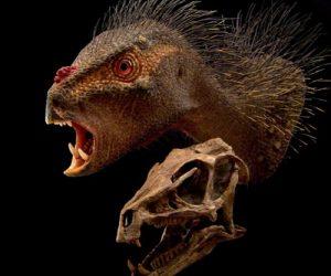 SA Dinosaur